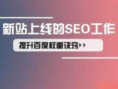惠州SEO:影响SEO排名的十一大因素截图